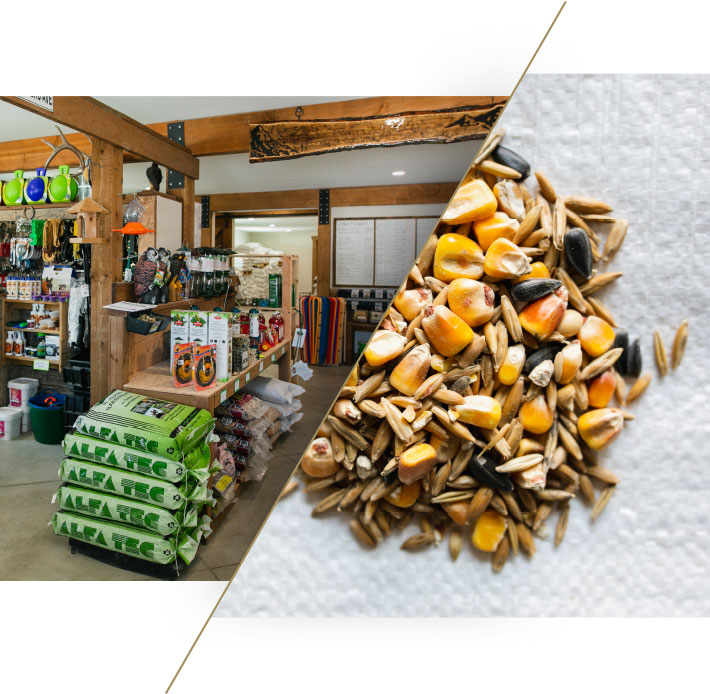 Quality Livestock Feed, Supplies, Pet Food, and Feeding